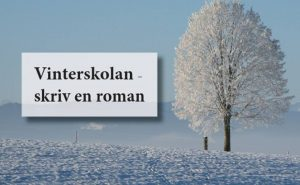 Vinterskolan
